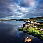Last light on the lochan by colin campbell