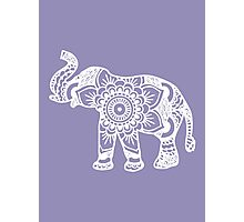 Mandala Elephant White Photographic Print