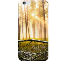 Last Obstacle (Forest Sun) iPhone Case/Skin