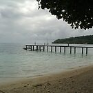 Tahiti Scenery #6 by Kristin Hamm