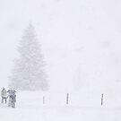 Not afraid of a little bit of snow by Arie Koene