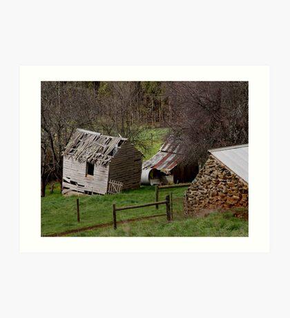 photoj Tassie Old Barns Art Print