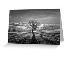 Lone tree over the East Somerset Railway Greeting Card