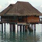 Tahiti Scenery #10 by Kristin Hamm