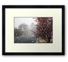 Leura Snow Framed Print