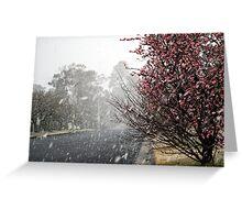 Leura Snow Greeting Card