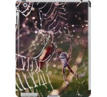 frosty spider iPad Case/Skin