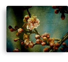 Hint of Spring Canvas Print