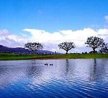 Blue by vierakaspar