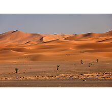 Sahara Photographic Print