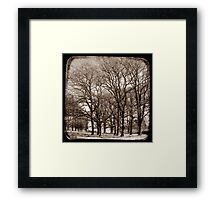 The Elms - Gostwyck, New South Wales, Australia Framed Print