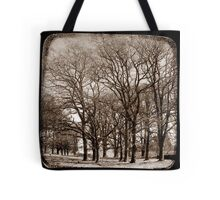 The Elms - Gostwyck, New South Wales, Australia Tote Bag