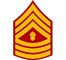 Master Gunnery Sergeant - E9 Photographic Print