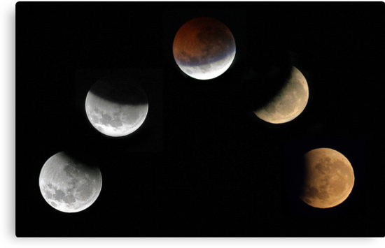 Partial Lunar Eclipse - August 17 2008  by EOS20