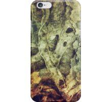 256 Biomechanical iPhone Case/Skin