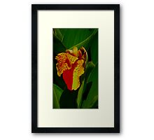 Two Tone Framed Print