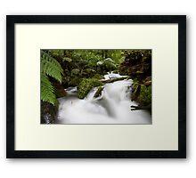 White Water Rafting Framed Print