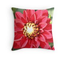Blast of color Throw Pillow