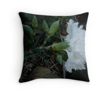 End Of Winter Surprise Throw Pillow
