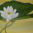 Nymphaea Alba by Marinella  Owens
