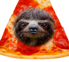 Obey the illuminati pizza sloth  Sticker