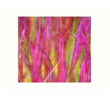 Grass in pink Art Print