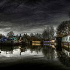 River Stort by Nigel Bangert