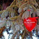 Be My Valentine by WildThingPhotos