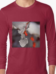 Icy Elegance Long Sleeve T-Shirt