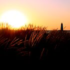 Point Besty Lighthouse by Peggy  Zinn
