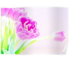 Pretty Pale Fractalius Tulips Poster