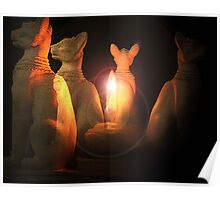 The Tomb of Bastet Poster