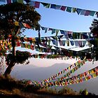 Prayer Flags at Sunset, Nepal by David Clark