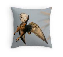 Common Kestrel Throw Pillow