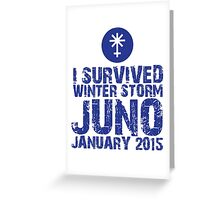 Cool 'I Survived Winter Storm Juno January 2015' T-shirts, Hoodies, Accessories and Gifts Greeting Card