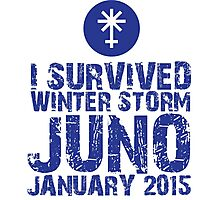 Cool 'I Survived Winter Storm Juno January 2015' T-shirts, Hoodies, Accessories and Gifts Photographic Print