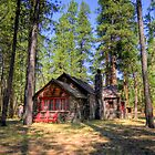 Cabin In The Woods by Ryan Nowell