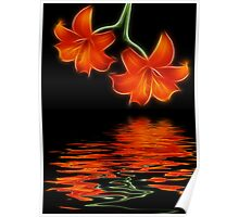 Two Lilies Poster