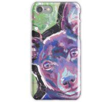 Rat Terrier Dog Bright colorful pop dog art iPhone Case/Skin
