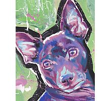 Rat Terrier Dog Bright colorful pop dog art Photographic Print