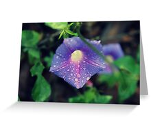Just After the Rain Greeting Card