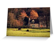 Little Country Dream Greeting Card