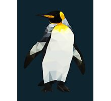 Polygon King Penguin Photographic Print