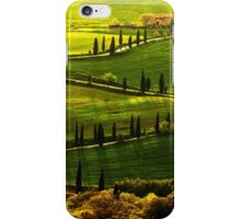 Cypresses Alley iPhone Case/Skin