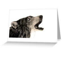 Wolf realism drawing  Greeting Card