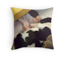 Cuddling Pups Throw Pillow