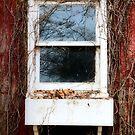 Barn Window by Carrie Bonham