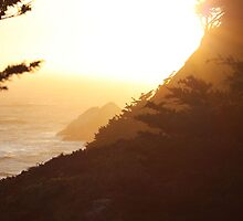 Sutro Heights Sunset by schjlatah