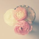 Evening Light Ranunculus by Nicola  Pearson