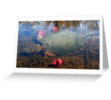 Snapping Turtle (Submerged) Greeting Card
